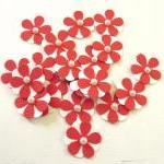 Teeny Tiny Red and White Flowers - ..